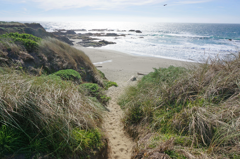 Walk-On-Beach-Sea-Ranch