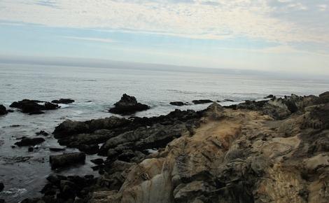 Bluff Top Trail coastal rocks